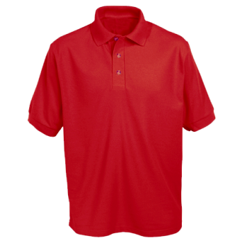 Ravenfield School Polo Shirt