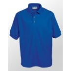 Bramley Sunnyside Junior School Polo Shirt